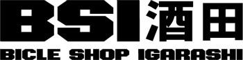 BSI logo.jpg